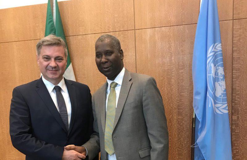 Zvizdić meets with President of UN General Assembly Tijjani Muhammad-Bande