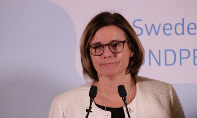 Lövin: Sweden wants to help Bosnia and Herzegovina to improve air quality