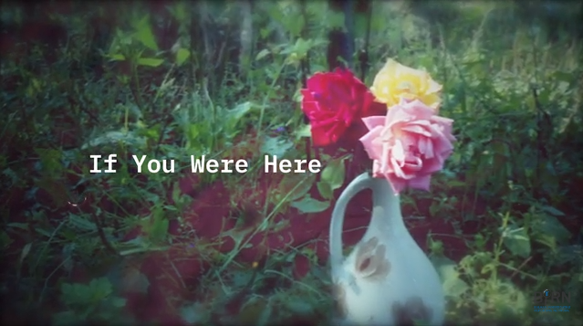 BIRN launches 'If You Were Here' Missing Persons Campaign