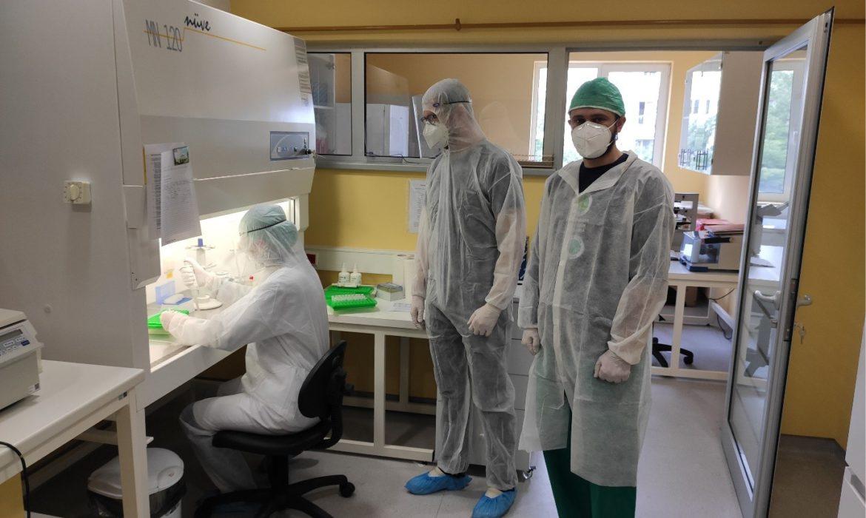 Faculty of Veterinary in Sarajevo isolates BiH strain of SARS-CoV-2 virus