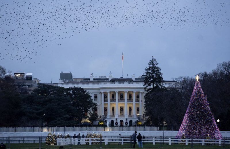 White House plans holiday parties despite surging COVID-19 cases across U.S.