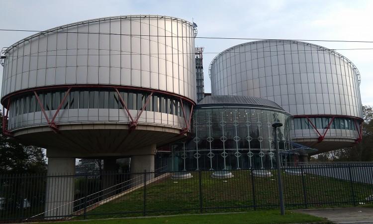 ECHR renders judgment that BiH has discriminated against Svetozar Pudarić