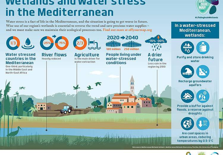WWF: Wetland restoration secures much-needed freshwater resources