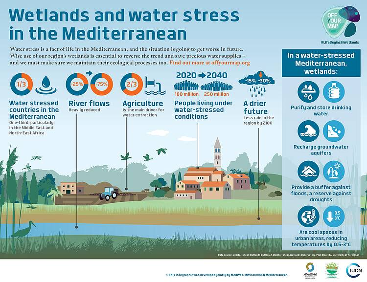 WWF: Wetland restoration secures much-needed freshwater resources