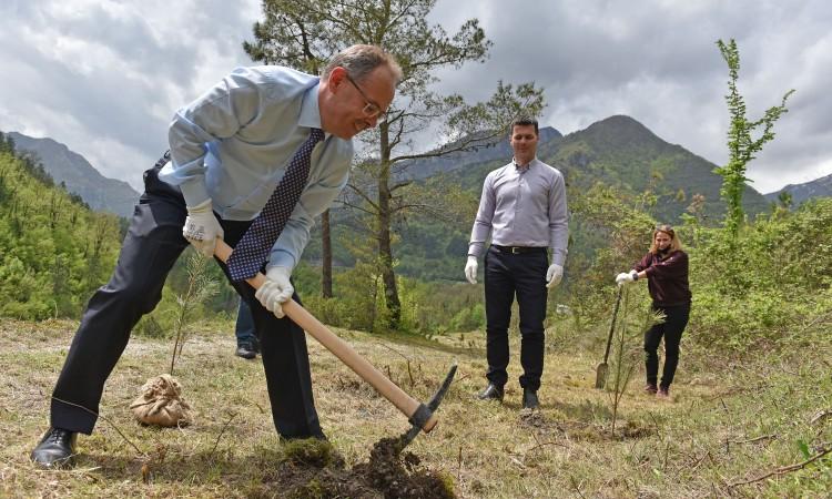 A thousand trees for Jablanica: Hunn and Šabanović plant black pine seedlings