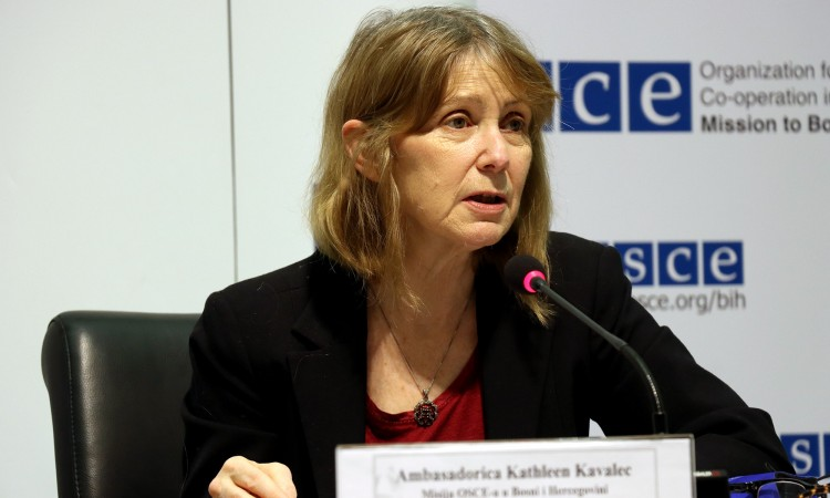 Ribeiro and Kavalec condemn a targeted online hate campaign against the media